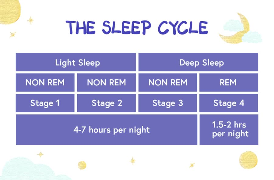 sleep cycle stages REM and Non-REM
