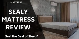 sealy-mattress-review
